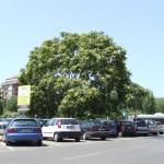 Bari, parking
