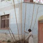 Bari, Amendola street