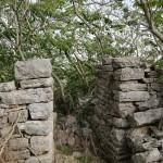 Pompei wood - Altamura (BA)