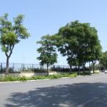 Bari - Lungomare