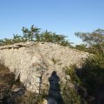 Muro paralupi1
