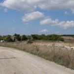 Strada dei passeggeri - Minervino Murge