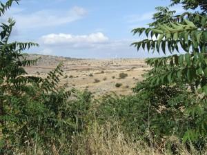 panorama slide2