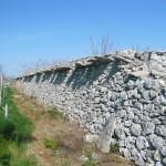Muro paralupi